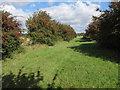 TL5364 : White Fen Droveway by Hugh Venables