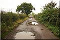 SK7281 : Potholes & puddles by Richard Croft