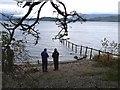NS4287 : Southern shore of Loch Lomond by Jim Barton