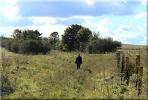 SU0248 : 2012 : Walkers on a boggy bit of Salisbury Plain by Maurice Pullin
