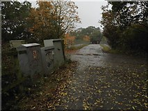 TQ1662 : Footpath over the A3 between Chessington and Claygate by David Howard