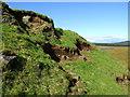 NR8157 : West bank of stream feeding Loch Cruinn in Kintyre by ian shiell