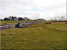 NY6166 : Hadrian's Wall, Birdoswald Roman Fort by David Dixon