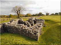 NY6166 : Birdoswald Roman Fort, Hadrian's Wall by David Dixon