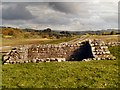 NY6166 : Roman Fort, Birdoswald by David Dixon