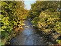 NY5663 : River Irthing, near Lanercost by David Dixon