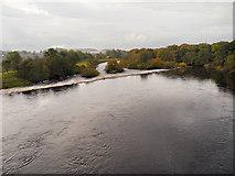NY9170 : River North Tyne, Chollerford by David Dixon