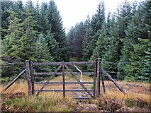 NN6255 : Gate in deer fence south of Loch Rannoch by wrobison