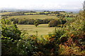 ST4095 : Farmland above the Usk valley by Philip Halling