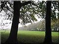 NZ3552 : The Park, Sunderland by Alex McGregor
