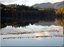 NN9357 : Loch Faskally by Euan Nelson