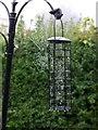SX9065 : Cobwebs on bird feeder by Derek Harper