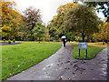 NY9364 : Abbey Gardens, Hexham by David Dixon