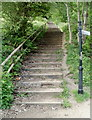 SO2800 : 116 steps up to gorsedd stones, Pontypool Park by Jaggery