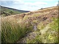 NZ6502 : A minor boggy patch on the Esk Valley Way by Christine Johnstone