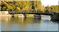J3675 : Footbridge, Victoria Park, Belfast by Albert Bridge