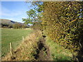 SD7186 : The Dales Way by Ian S