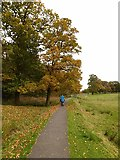 NY4057 : Path into Rickerby Park by Oliver Dixon