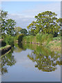 SJ5948 : Llangollen Canal near Wrenbury cum Frith, Cheshire by Roger  Kidd