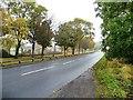 NZ2426 : Spout Lane, Shildon by Christine Johnstone