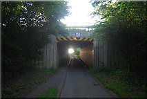 TG1608 : New Rd under the Norwich bypass (A47) by N Chadwick