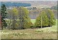 NN5156 : Field descending from minor road by Trevor Littlewood