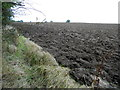 SP2350 : Recently Ploughed Field by Nigel Mykura