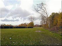 SJ8487 : Gatley, Scholes Park by David Dixon