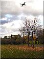 SJ8486 : Rose Vale Park, Under the Flight Path by David Dixon