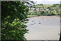 SX8655 : River Dart by N Chadwick