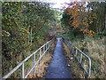 NY6665 : Path off the A69 near Greenhead by JThomas