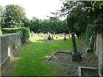 SY7190 : St Michael, Stinsford: churchyard (a) by Basher Eyre