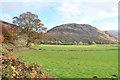 NM9835 : Fields at Inveresragan by Steven Brown