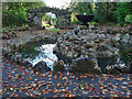 SO1408 : Autumn in The Grotto, Bedwellty Park, Tredegar by Robin Drayton
