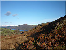SD2890 : Bracken and rock outcrops, Blawith Fells by Karl and Ali
