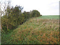 TL5183 : Hedgerow by West Fen Drove by Hugh Venables