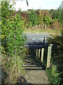 TL6844 : Footpath Steps by Keith Evans