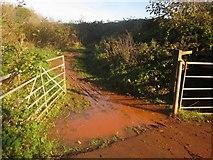 SX9066 : Wet gateway, Barton tip by Derek Harper