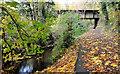 J1585 : Old millrace, Antrim by Albert Bridge