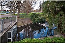 TQ4667 : River Cray by Ian Capper