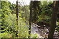 NY8828 : The River Tees downstream from High Force by Steve Daniels