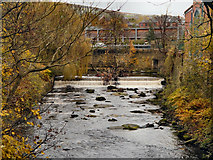 SJ9698 : River Tame, Weir at Stalybridge by David Dixon
