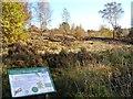 SK5760 : Entering Strawberry Hill Heath SSSI by Antony Dixon