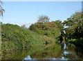 SJ6048 : Llangollen Canal at Wrenbury Heath, Cheshire by Roger  Kidd