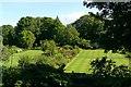 NR6447 : Tartan lawns by Rose and Trev Clough