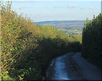 ST6937 : 2012 : West down Copplesbury Lane by Maurice Pullin
