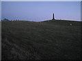SK2701 : Obelisk and sheep on Hoo Hill, dusk by Robin Stott