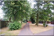 TM1542 : Wooded footpath along Belstead Rd by N Chadwick