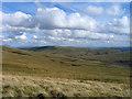 NS7531 : Grassy slopes east from Little Auchinstilloch by Trevor Littlewood