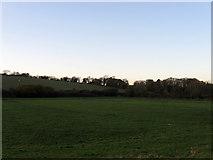 TQ5203 : Crossway Brook (1) by Simon Carey